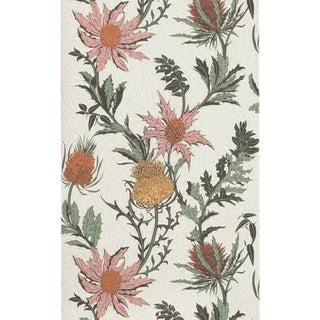 Cole & Son Thistle Wallpaper Roll - A Pink/Orange/Parch For Sale