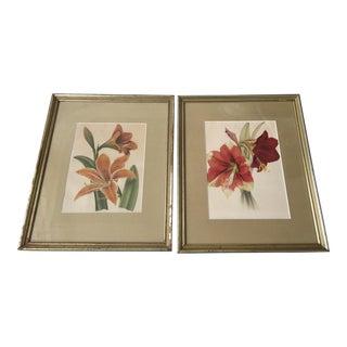 Vintage Botanic Floral Lithographs - A Pair For Sale