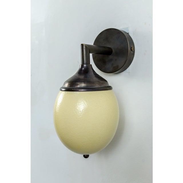 Dogfork Lamp Arts Ostrich Egg Cast Brass Arm Sconce For Sale - Image 4 of 11