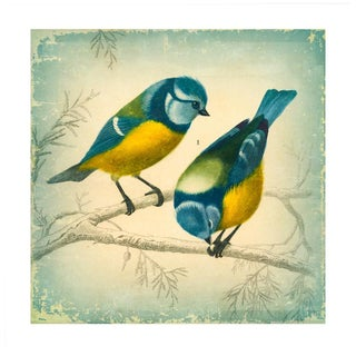 Antique '2 Birds' Archival Print