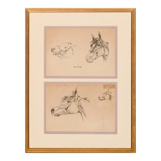 """Horse Heads"" Pencil Drawings For Sale"