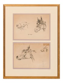 Image of Horse Drawings