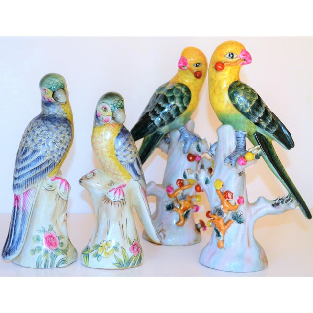 (Final Mark Down Taken) Chinese Export Porcelain Parrot Figurines - Set of 4 For Sale - Image 11 of 12