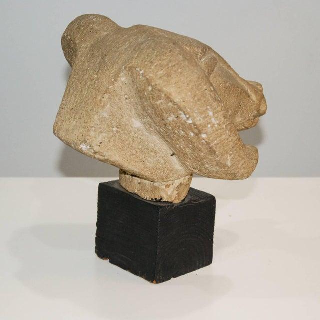 Richmond Professional Institute Limestone Ram's Head Sculpture For Sale - Image 5 of 9