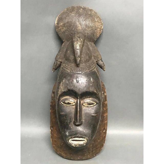 Brown African Tribal Art Baule Wood Mask For Sale - Image 8 of 8