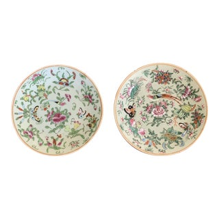 Antique Wucai Chinese Porcelain Celadon Plates - Set of 2 For Sale