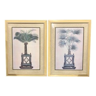20th Century Palm Tree Prints - a Pair For Sale