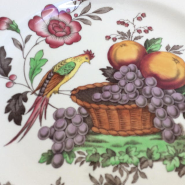 Cottage Antique Spode Bird Plate With Sterling Silver Rim For Sale - Image 3 of 5