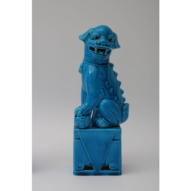 Asian 1920s Chinese, Glazed Peking Blue Foo Dogs - a Pair For Sale - Image 3 of 11
