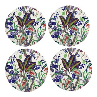 Amazonia Classic Coasters, Set of 4 For Sale