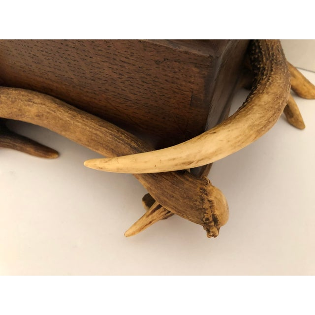 Antler Black Forest Wood Box With Natural Antlers For Sale - Image 7 of 13