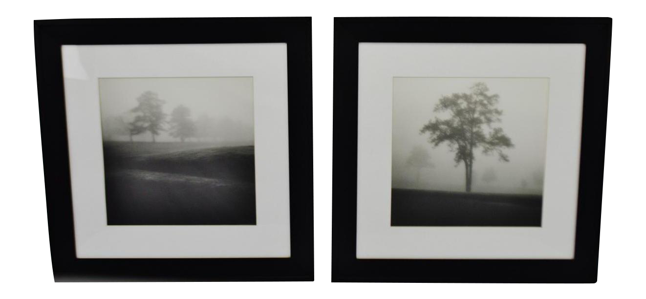 Black white ansel adams style framed prints a pair