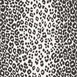 Sample - Schumacher Iconic Leopard Wallpaper in Graphite For Sale
