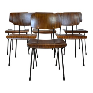 1970s Vintage Bent Wood Dining Chairs-Set of 6 For Sale