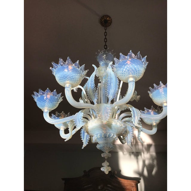 This Murano Chandelier in a very rare light blue opaline Glass comes with 8 Arms. It was hand made in Murano Italy ca...
