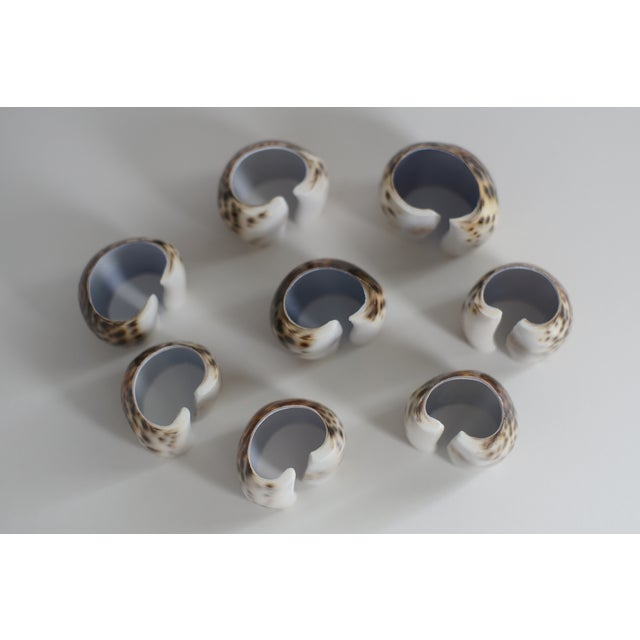 Vintage Tiger Cowrie Shell Napkin Rings- Set of 8 - Image 4 of 5