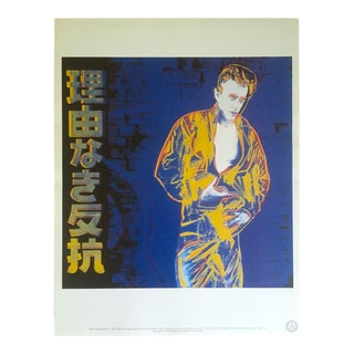 "Andy Warhol Estate Rare Vintage 1990 Collector's Lithograph Print "" Rebel Without a Cause - James Dean "" 1985 For Sale"