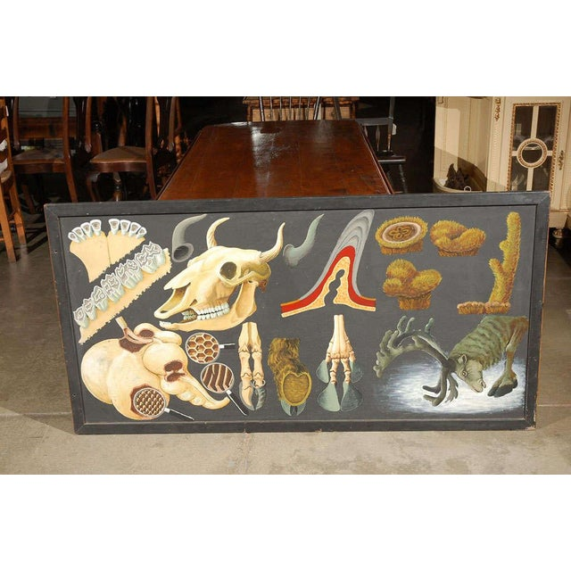Large Painting Illustrating Elements of a Deer - Image 8 of 10