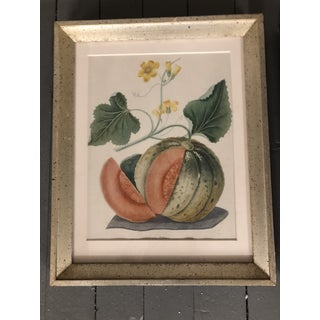 A Pair Vintage Lithographs of Melons Framed Preview
