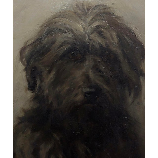 English Traditional William Hardie Hay -Portrait of a Beautiful Black Terrier Dog -Oil Painting C.1911 For Sale - Image 3 of 8