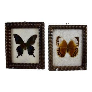 Victorian Bobbin Turned Framed Butterflies, a Pair