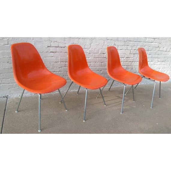 Mid-Century Herman Miller Shell Chairs - Set of 4 - Image 3 of 3