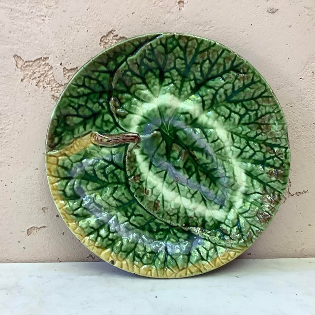 19th-Century English Majolica Begonia Plate For Sale In Austin - Image 6 of 6