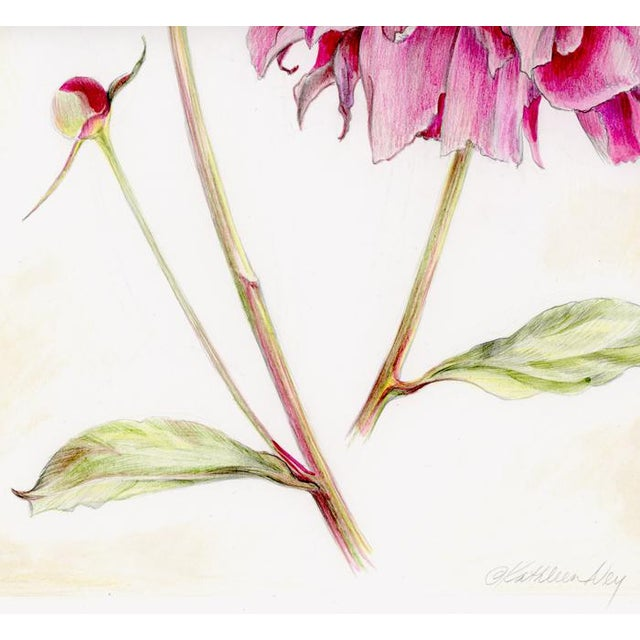 Natural history botanical art, very detailed and delicately colored, perfect in a shabby chic decor setting. Would also...