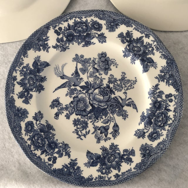 Blue Asiatic Pheasant Johnson Brothers Blue and White Plates - 4 Pieces For Sale - Image 8 of 11