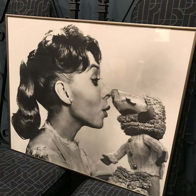 Vintage Television Publicity Photograph of Shari Lewis and LampChop - Image 5 of 8