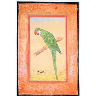 Vintage Parrot Folk Art Painting, Jaipur