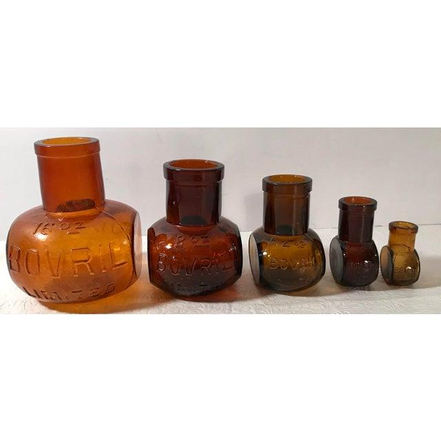 Antique Brown Bovril Bottles - Set of 5 For Sale - Image 9 of 9