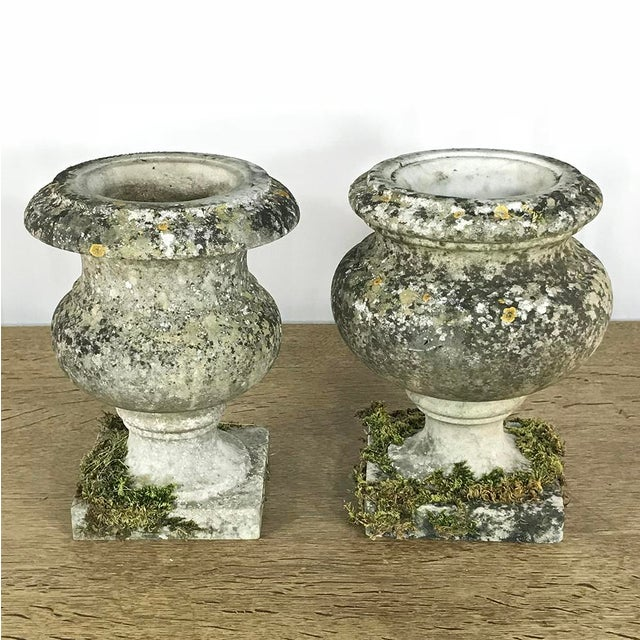 Stone Pair 19th Century Carved Marble Vases For Sale - Image 7 of 11