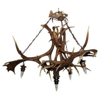 Elk and Deer Horn Chandelier For Sale