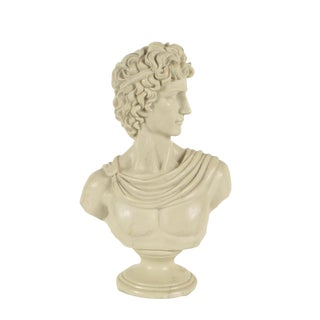 Contemporary Resin Bust After Apollo Belvedere For Sale