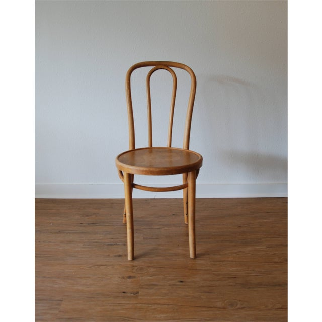 Thonet Cafe Chairs - Set of 5 For Sale - Image 5 of 6