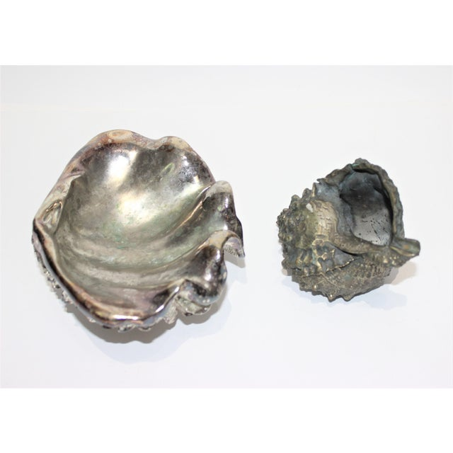 Contemporary Shell Sculptures Ribbed Clam and Conch - a Set of 2 For Sale - Image 3 of 12