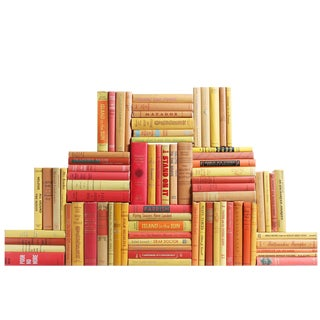Midcentury Sunset Book Wall : Set of Seventy Five Decorative Books