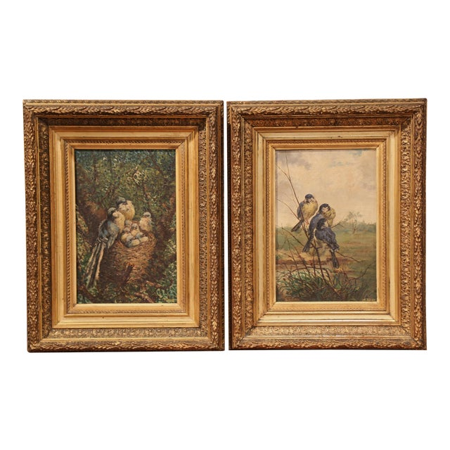 Pair of 19th Century French Birds Oil Paintings in Gilt Frames Signed Delor For Sale
