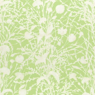 Scalamandre Wildflower Fabric in Grasshopper Sample For Sale