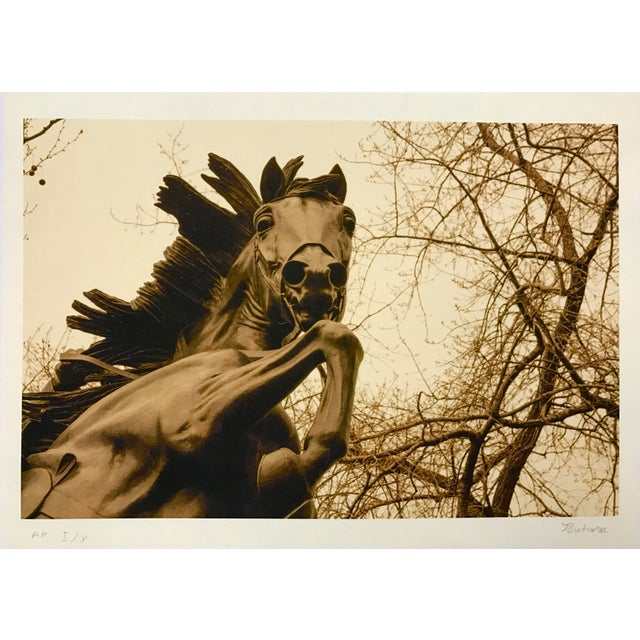 Central Park NYC Horse Print For Sale In Los Angeles - Image 6 of 6