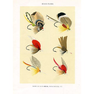 1950s Charles Orvis Fishing Flies Print, Bass Flies For Sale