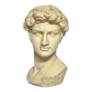 Vintage Mid-Century Neoclassical Style Bust of David Sculpture For Sale