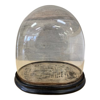 Antique Hand Blown Glass Display Dome For Sale