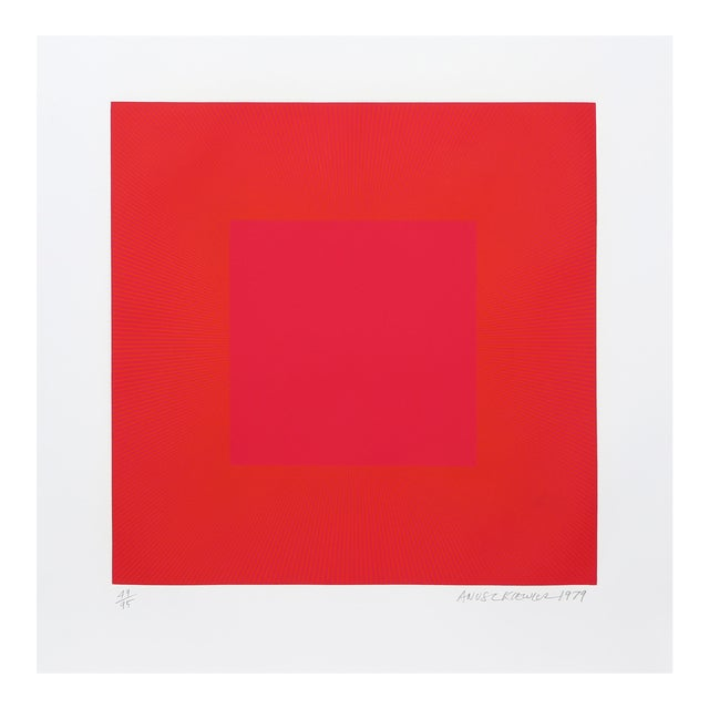 "Richard Anuszkiewicz, ""Summer Suite"" (Red & Gold Iv), Op Art Etching For Sale"