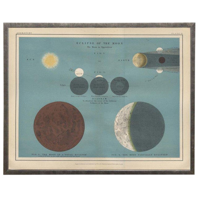 """Ocean Blue Astronomy Plate VI in Shadowbox 19 1/2x 15 1/2"""" For Sale"""