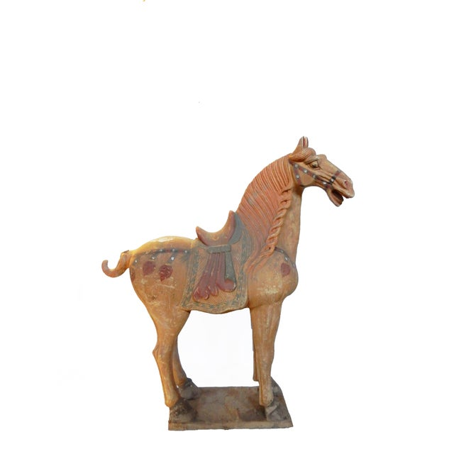 Lg Tang Dynasty-Style Standing Horses - a Pair - Image 2 of 8