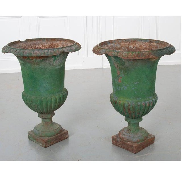 Metal French 19th Century Painted Cast Iron Urns - a Pair For Sale - Image 7 of 8