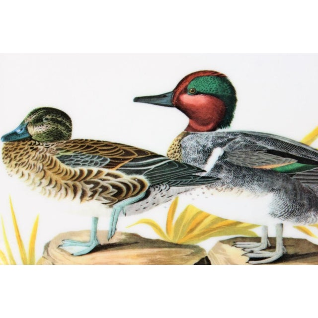 "John James Audubon ""Green Winged Teal"" Coasters - Set of 4 For Sale - Image 5 of 7"
