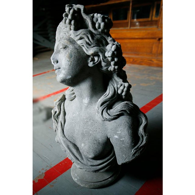 Classical Bust - Cast Stone For Sale In New York - Image 6 of 7
